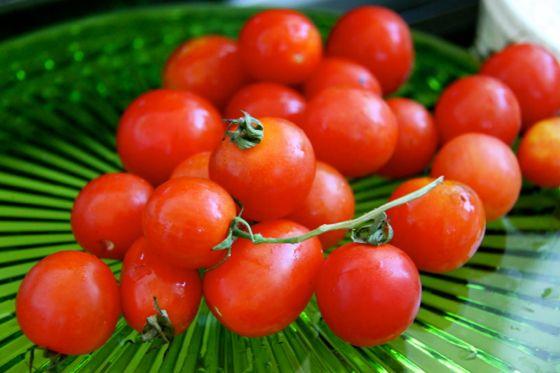Fumikoさんのプチトマト